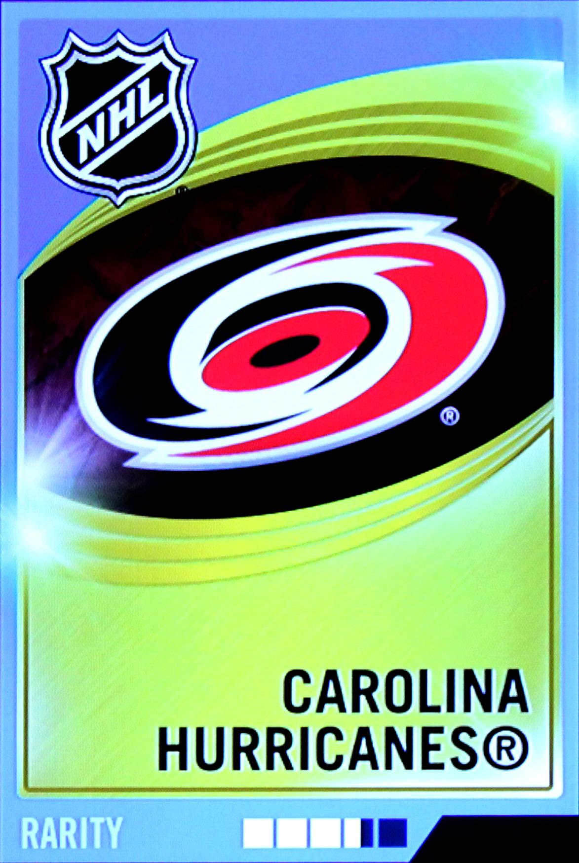 Hurricanes Team Logo Team Logo Carolina Hurricanes